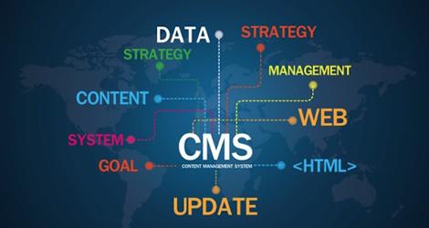 DigitalLabz   CMS Web Development Services In Kitchener